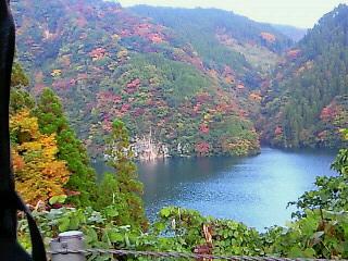 秋めいていました。日田